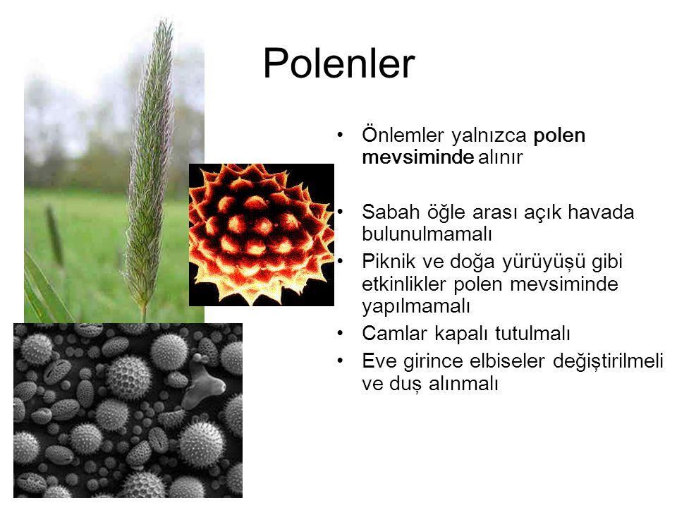 Polenler Önlemler yalnızca polen mevsiminde alınır Sabah öğle arası açık havada bulunulmamalı Piknik ve doğa yürüyüşü gibi etkinlikler polen mevsimind