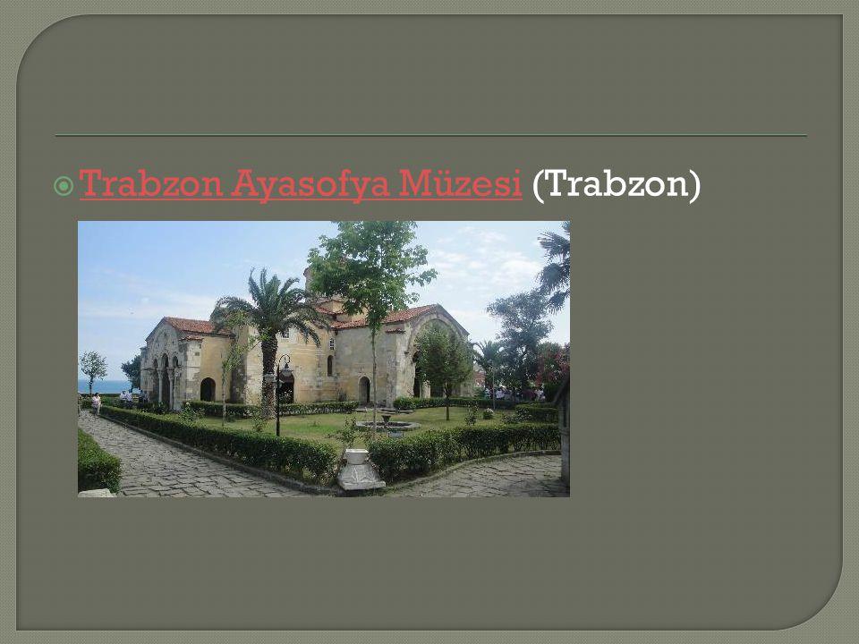  Trabzon Ayasofya Müzesi (Trabzon) Trabzon Ayasofya Müzesi
