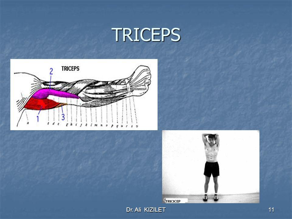 Dr. Ali KIZILET11 TRICEPS