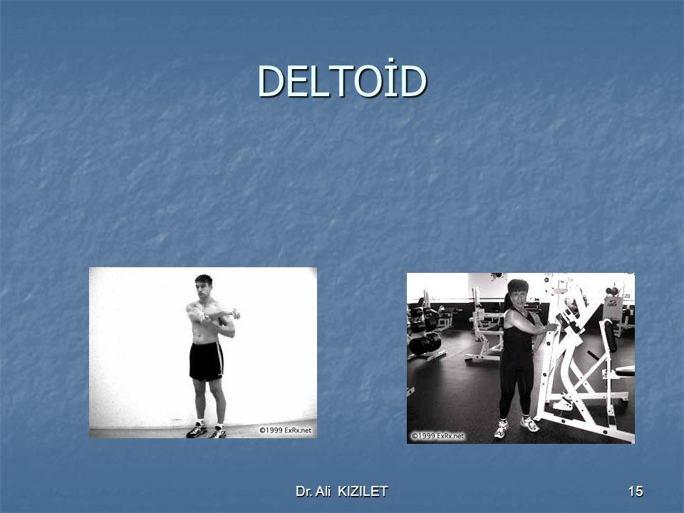 Dr. Ali KIZILET15 DELTOİD