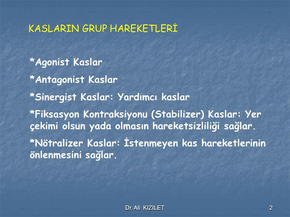 Dr. Ali KIZILET13 TRICEPS