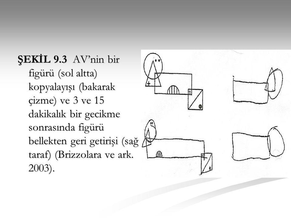ŞEKİL 9.3 AV'nin bir figürü (sol altta) kopyalayışı (bakarak çizme) ve 3 ve 15 dakikalık bir gecikme sonrasında figürü bellekten geri getirişi (sağ ta