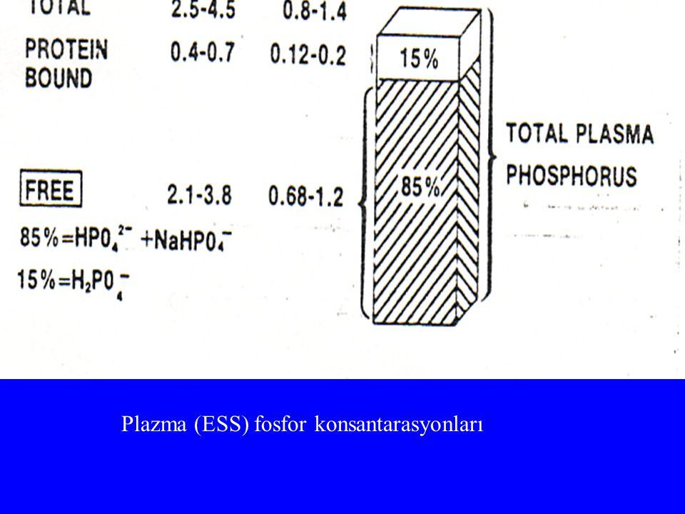 Plazma (ESS) fosfor konsantarasyonları