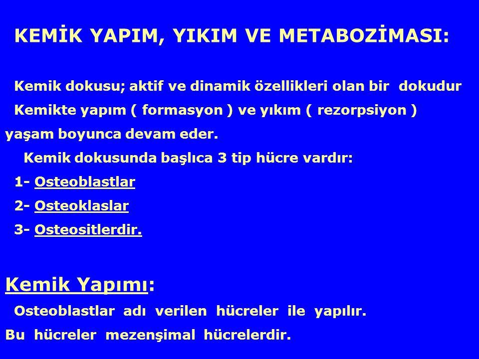 Vitamin-D metabolizması ve etkileri