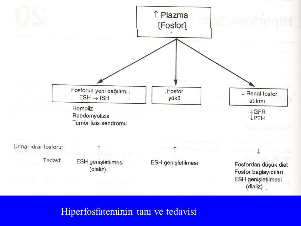 Hiperfosfateminin tanı ve tedavisi