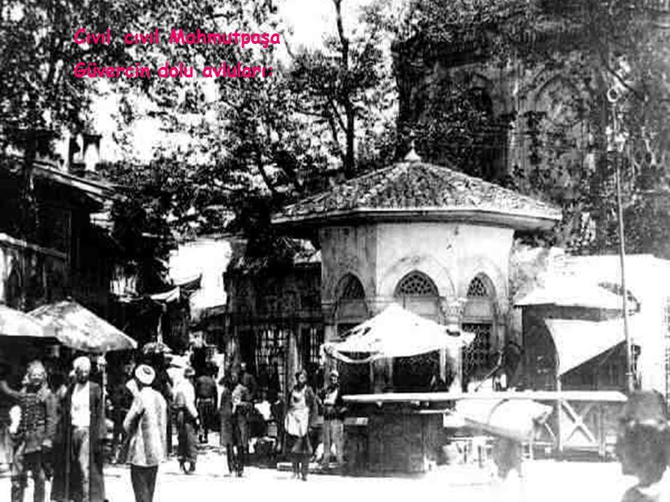 Çekiçseslerigeliyordoklardan, Güzelimbaharrüzgarlarında,terkokuları; İstanbul' udinliyorum,gözlerimkapalı.
