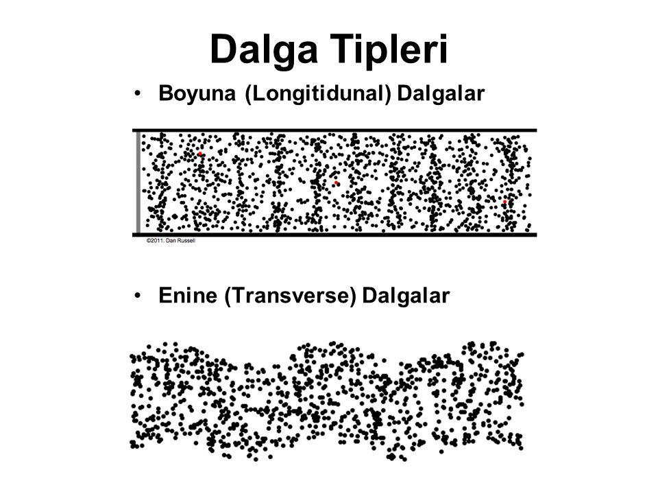 Boyuna (Longitidunal) Dalgalar Enine (Transverse) Dalgalar Dalga Tipleri