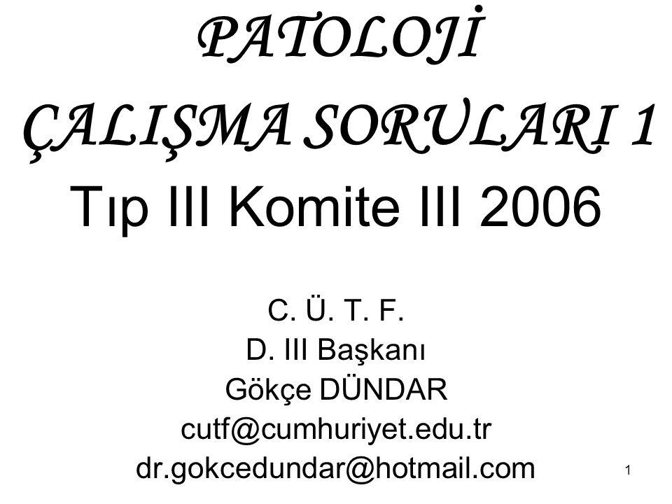 1 PATOLOJİ ÇALIŞMA SORULARI 1 Tıp III Komite III 2006 C. Ü. T. F. D. III Başkanı Gökçe DÜNDAR cutf@cumhuriyet.edu.tr dr.gokcedundar@hotmail.com