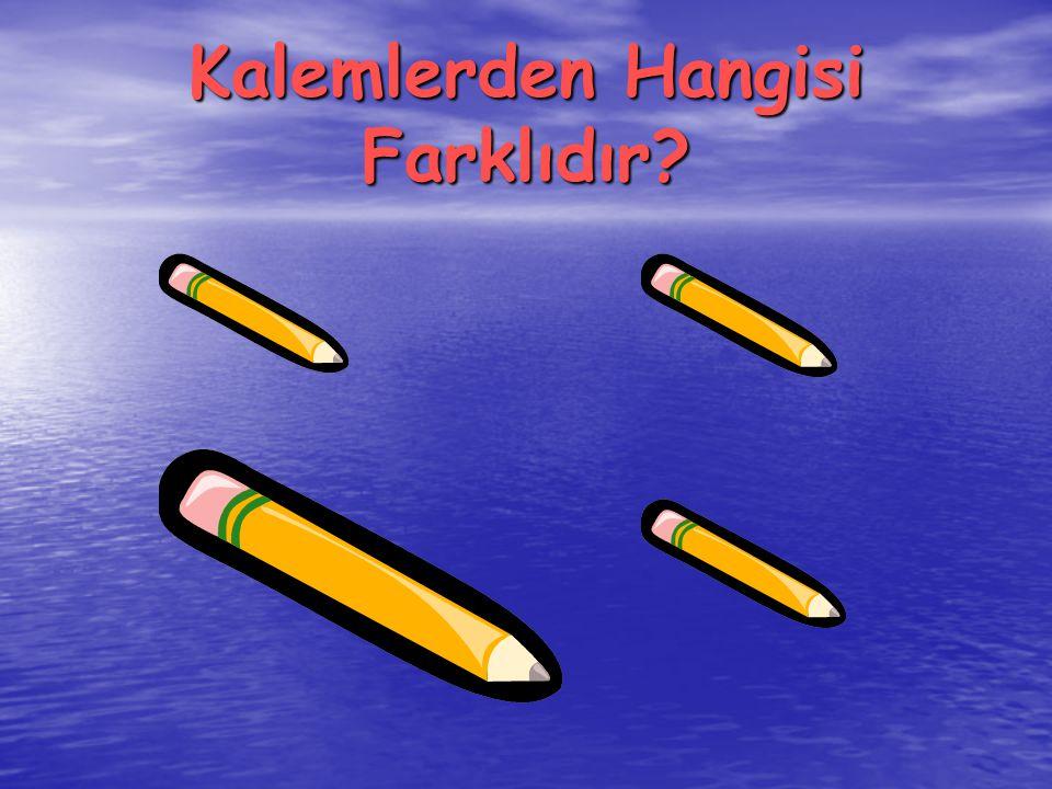 Kalemlerden Hangisi Farklıdır?
