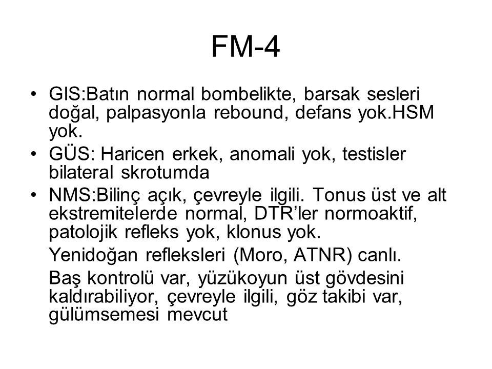 FM-4 GIS:Batın normal bombelikte, barsak sesleri doğal, palpasyonla rebound, defans yok.HSM yok. GÜS: Haricen erkek, anomali yok, testisler bilateral
