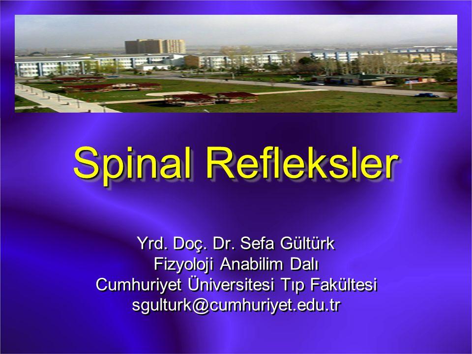 Spinal Refleksler Yrd.Doç. Dr.