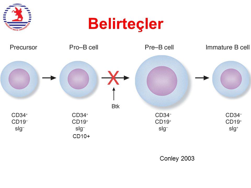 CD10+ Conley 2003 Belirteçler