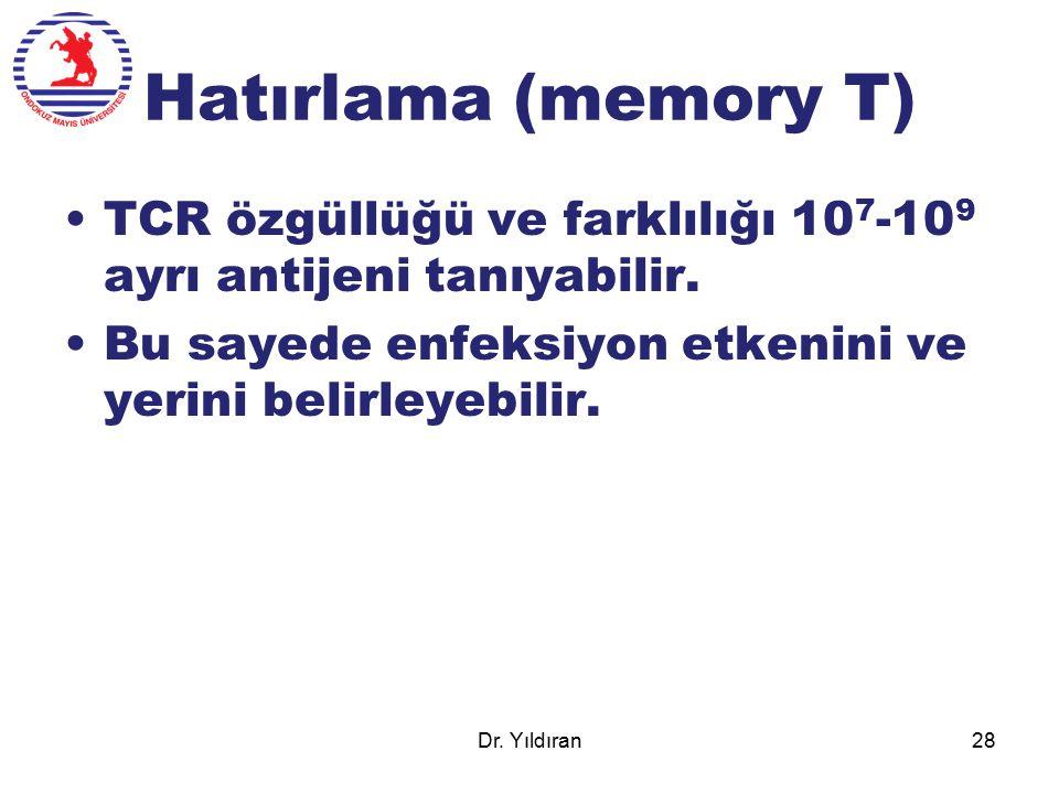 Hatırlama (memory T) TCR özgüllüğü ve farklılığı 10 7 -10 9 ayrı antijeni tanıyabilir. Bu sayede enfeksiyon etkenini ve yerini belirleyebilir. Dr. Yıl