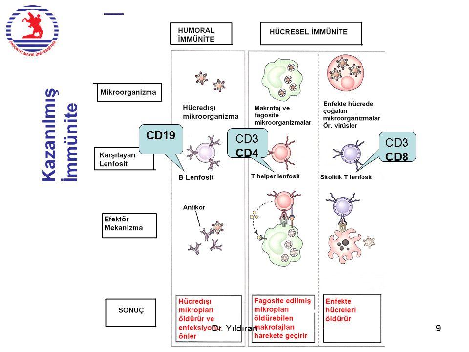T lenfosit seleksiyonu Dr. Yıldıran20 Zone 1-4 AIRE DP DN SP