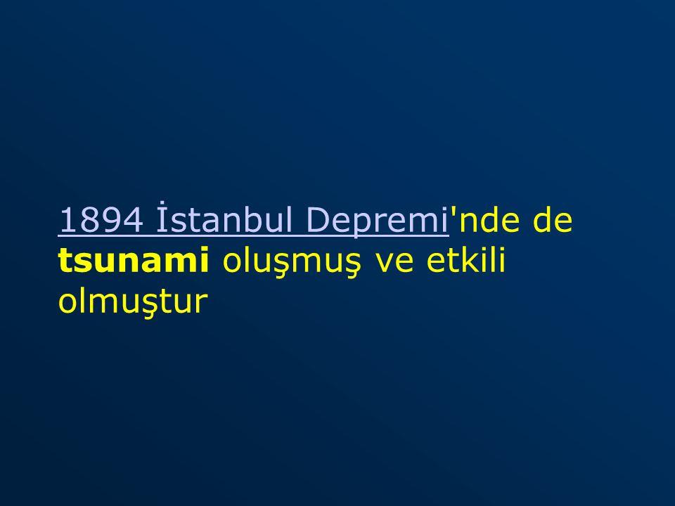 1894 İstanbul Depremi1894 İstanbul Depremi'nde de tsunami oluşmuş ve etkili olmuştur