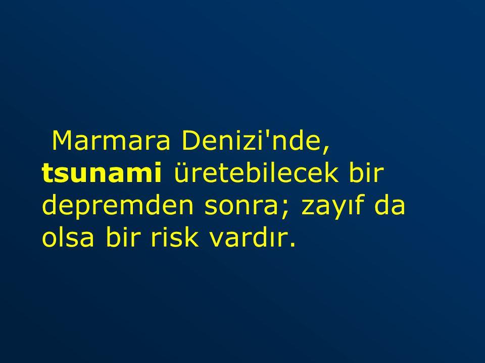 Marmara Denizi'nde, tsunami üretebilecek bir depremden sonra; zayıf da olsa bir risk vardır.