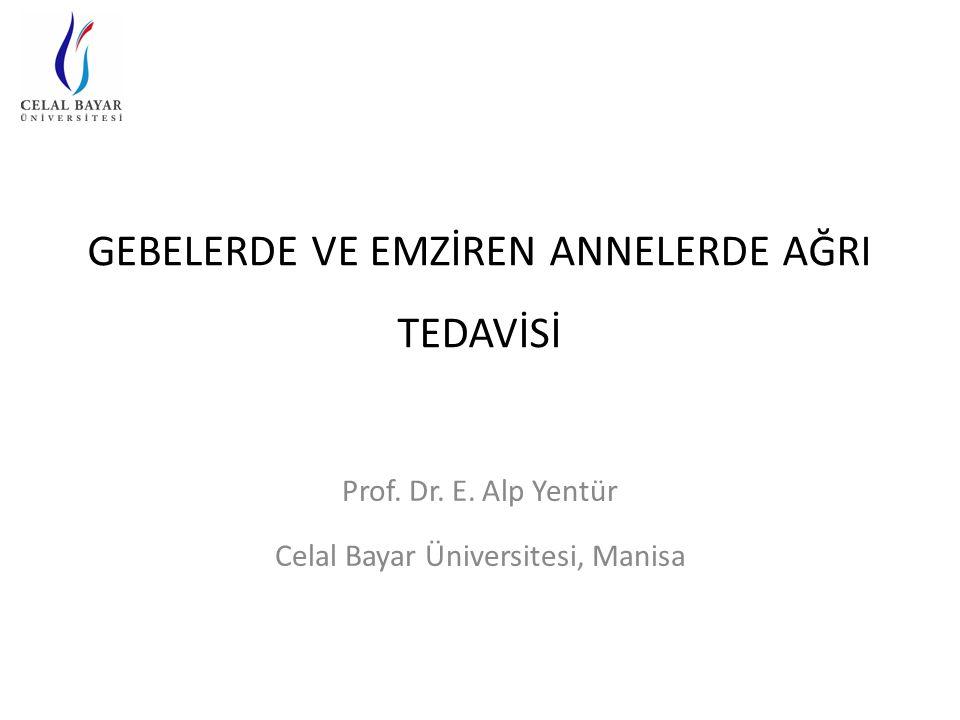 GEBELERDE VE EMZİREN ANNELERDE AĞRI TEDAVİSİ Prof. Dr. E. Alp Yentür Celal Bayar Üniversitesi, Manisa