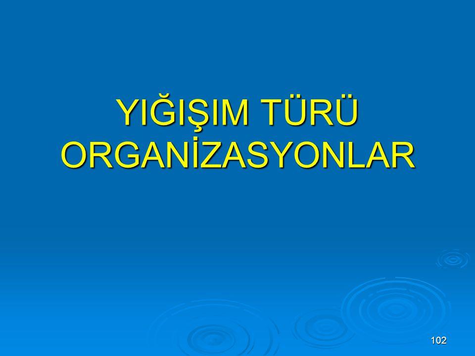 102 YIĞIŞIM TÜRÜ ORGANİZASYONLAR