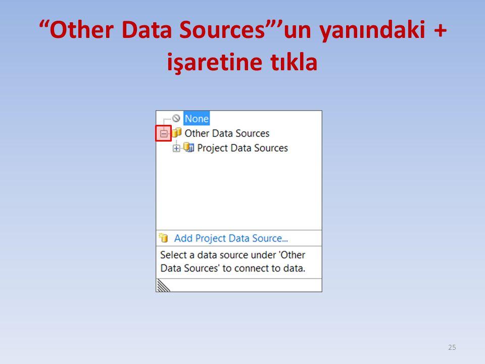 """""""Other Data Sources""""'un yanındaki + işaretine tıkla 25"""