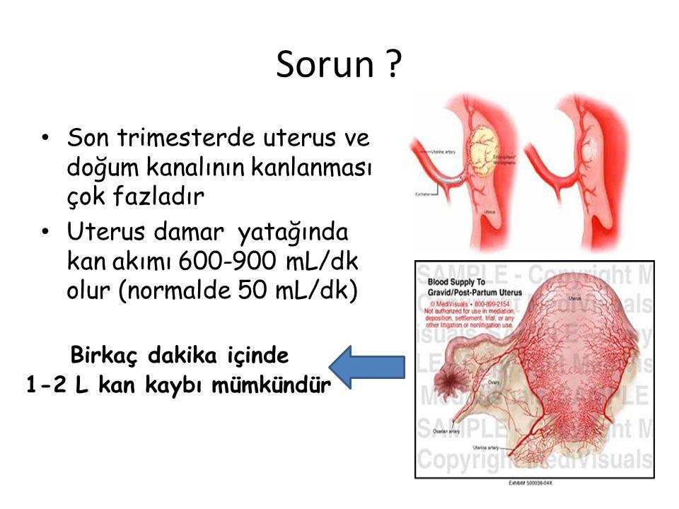 Sorun ? Son trimesterde uterus ve doğum kanalının kanlanması çok fazladır Uterus damar yatağında kan akımı 600-900 mL/dk olur (normalde 50 mL/dk) Birk