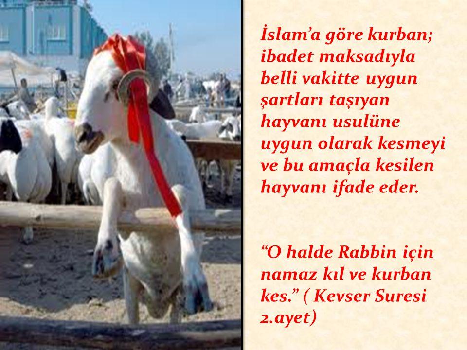 İslam'a göre kurban; ibadet maksadıyla belli vakitte uygun şartları taşıyan hayvanı usulüne uygun olarak kesmeyi ve bu amaçla kesilen hayvanı ifade ed