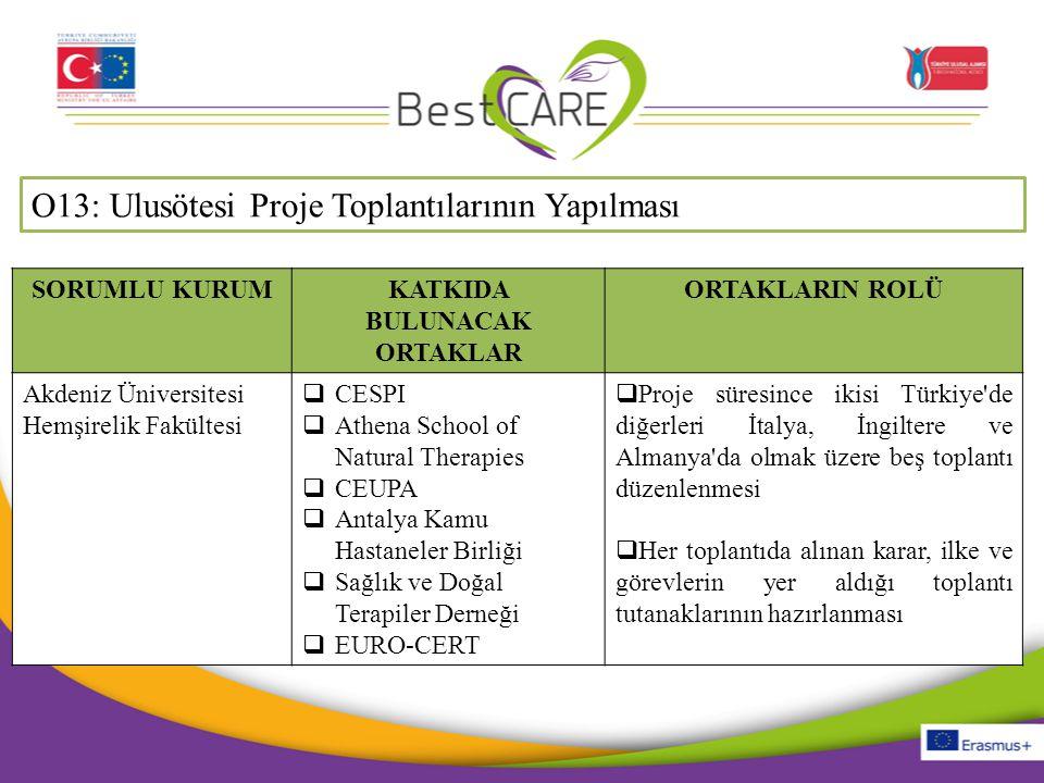 O13: Ulusötesi Proje Toplantılarının Yapılması SORUMLU KURUMKATKIDA BULUNACAK ORTAKLAR ORTAKLARIN ROLÜ Akdeniz Üniversitesi Hemşirelik Fakültesi  CES