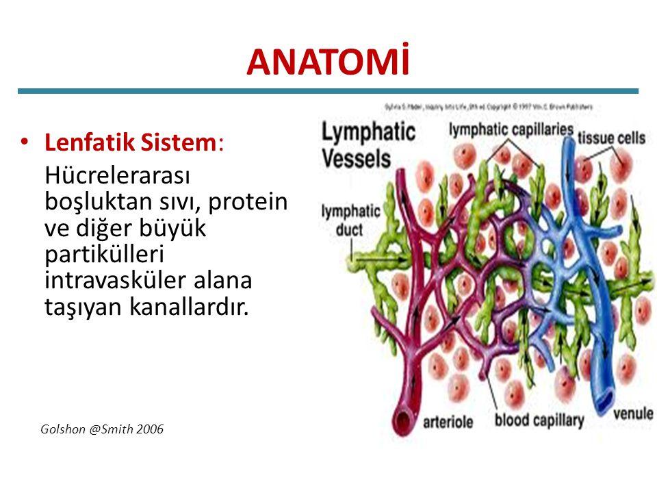 Lenfödem Komlikasyonları Cilt enfeksiyonları.( Sellülit, lenfanjit ) Yara iyileşmesinde gecikme.