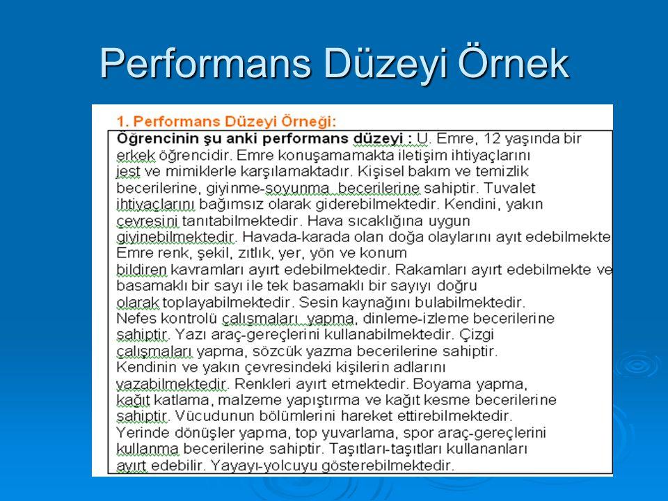 Performans Düzeyi Örnek