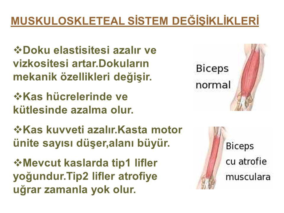 MUSKULOSKLETEAL SİSTEM DEĞİŞİKLİKLERİ  Doku elastisitesi azalır ve vizkositesi artar.Dokuların mekanik özellikleri değişir.