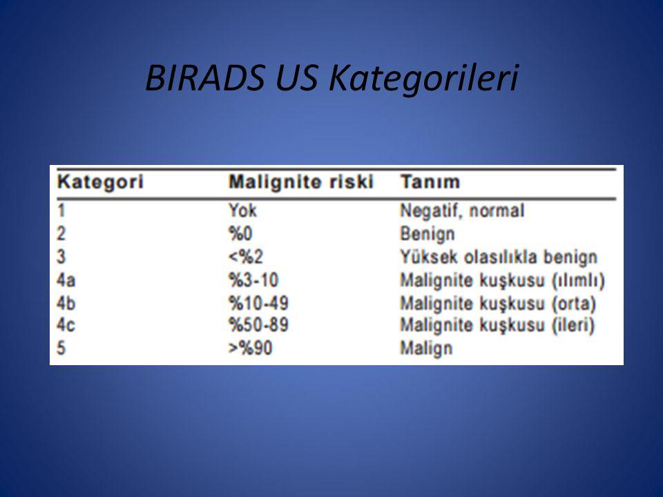 BIRADS US Kategorileri