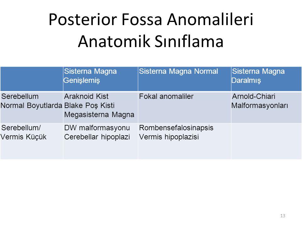 Posterior Fossa Anomalileri Anatomik Sınıflama 13 Sisterna Magna Genişlemiş Sisterna Magna NormalSisterna Magna Daralmış Serebellum Normal Boyutlarda