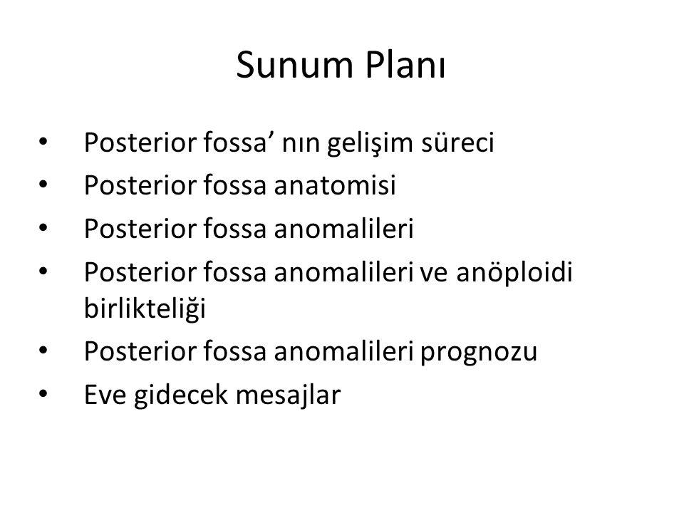 Sunum Planı Posterior fossa' nın gelişim süreci Posterior fossa anatomisi Posterior fossa anomalileri Posterior fossa anomalileri ve anöploidi birlikt