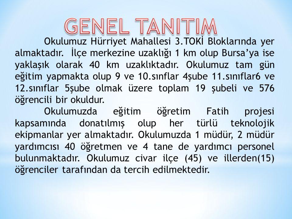 Okulumuz Hürriyet Mahallesi 3.TOKİ Bloklarında yer almaktadır. İlçe merkezine uzaklığı 1 km olup Bursa'ya ise yaklaşık olarak 40 km uzaklıktadır. Okul