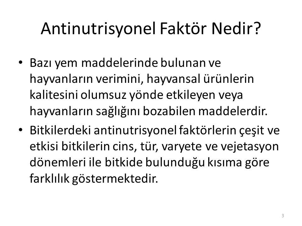 Antinutrisyonel Faktör Nedir.