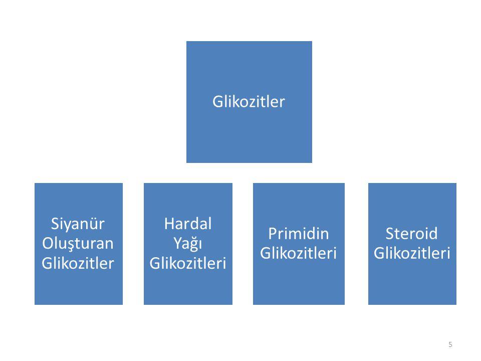Siyanür Oluşturan Glikozitler Hardal Yağı Glikozitleri Primidin Glikozitleri Steroid Glikozitleri Glikozitler 5