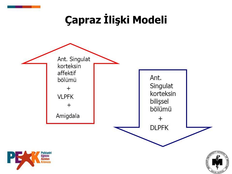 Çapraz İlişki Modeli Ant. Singulat korteksin affektif bölümü + VLPFK + Amigdala Ant. Singulat korteksin bilişsel bölümü + DLPFK