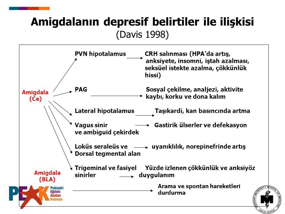 Amigdalanın depresif belirtiler ile ilişkisi (Davis 1998) Amigdala (Ce) PVN hipotalamus CRH salınması (HPA'da artış, anksiyete, insomni, iştah azalmas