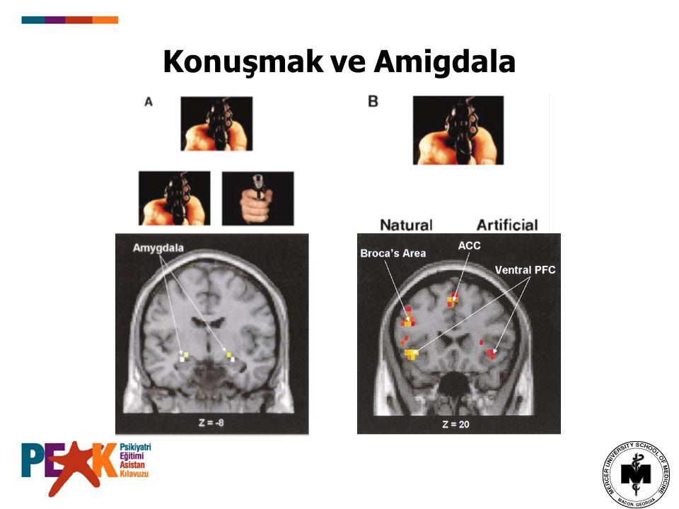 Konuşmak ve Amigdala