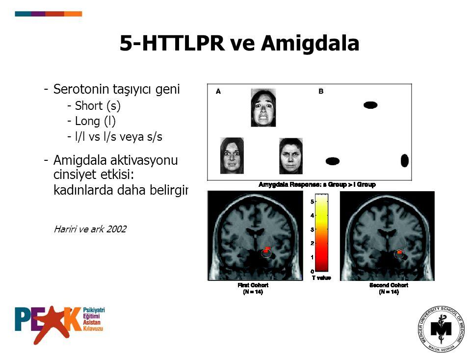 -Serotonin taşıyıcı geni - Short (s) - Long (l) - l/l vs l/s veya s/s -Amigdala aktivasyonu cinsiyet etkisi: kadınlarda daha belirgin 5-HTTLPR ve Amig