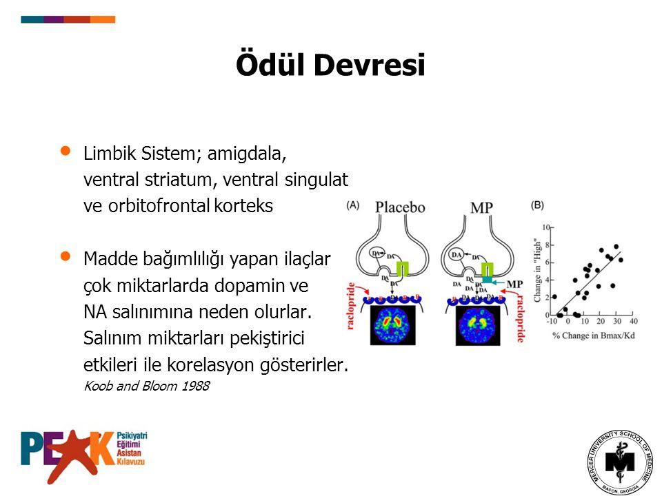 Ödül Devresi Limbik Sistem; amigdala, ventral striatum, ventral singulat ve orbitofrontal korteks Madde bağımlılığı yapan ilaçlar çok miktarlarda dopa