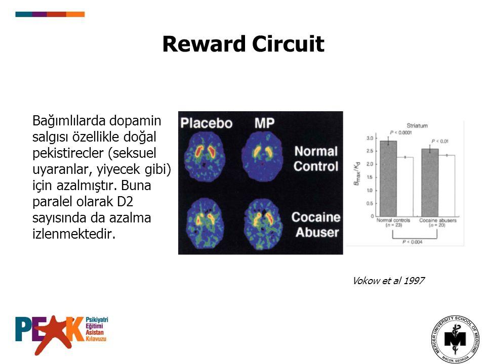 Reward Circuit Bağımlılarda dopamin salgısı özellikle doğal pekistirecler (seksuel uyaranlar, yiyecek gibi) için azalmıştır. Buna paralel olarak D2 sa