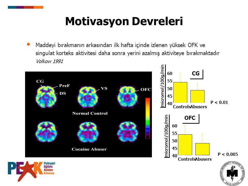 Motivasyon Devreleri Maddeyi bırakmanın arkasından ilk hafta içinde izlenen yüksek OFK ve singulat korteks aktivitesi daha sonra yerini azalmış aktivi