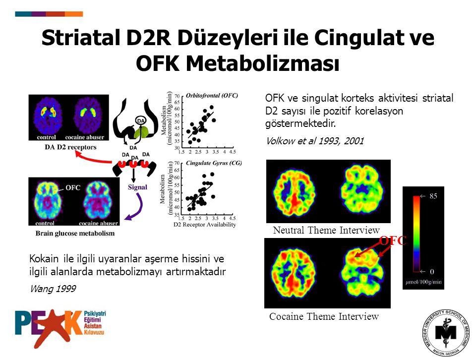 Striatal D2R Düzeyleri ile Cingulat ve OFK Metabolizması Neutral Theme Interview Cocaine Theme Interview OFC OFK ve singulat korteks aktivitesi striat