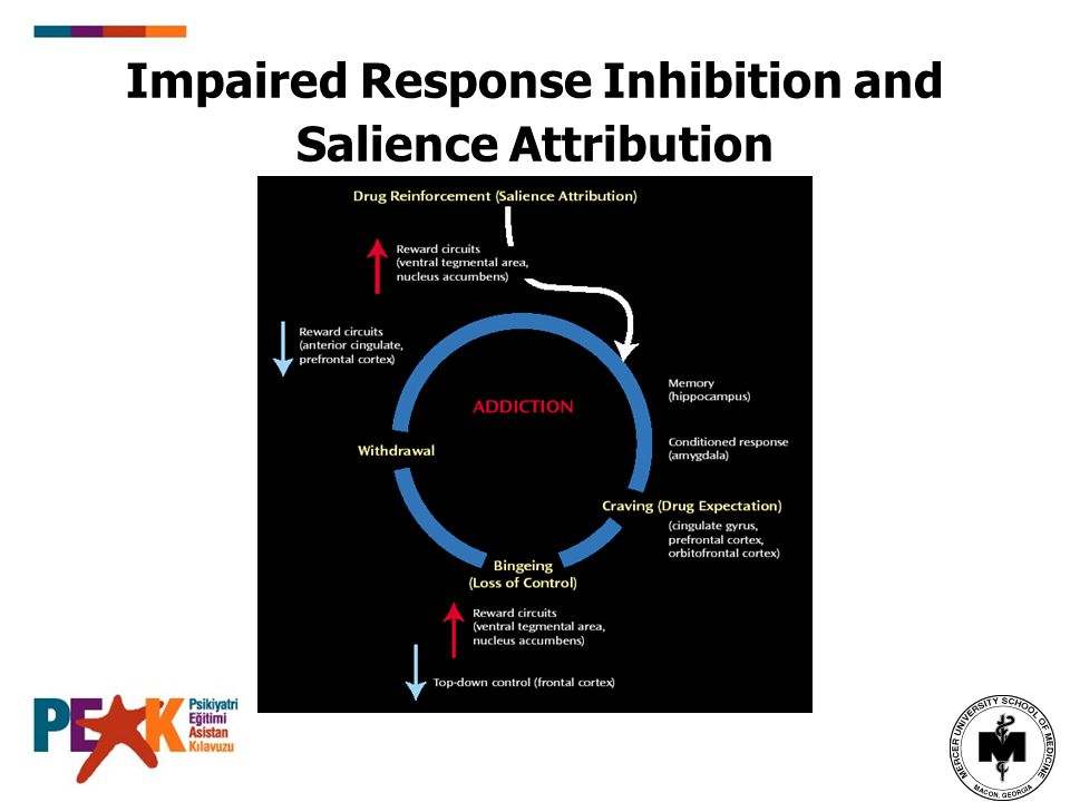 Impaired Response Inhibition and Salience Attribution