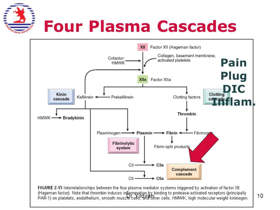 Four Plasma Cascades Pain Plug DIC Inflam. Dr. Yıldıran10