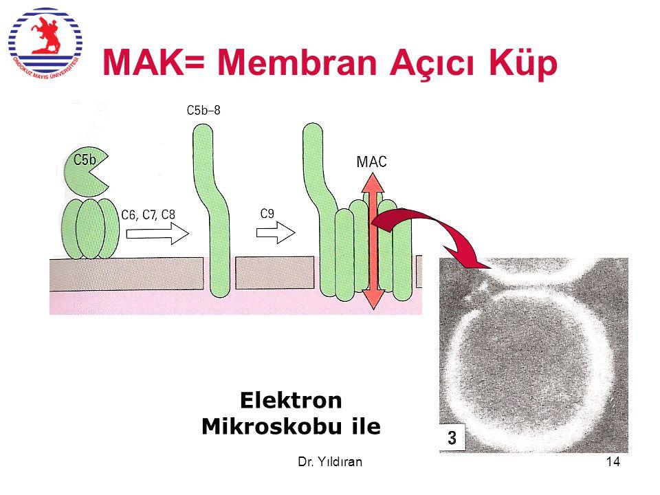 MAK= Membran Açıcı Küp Elektron Mikroskobu ile Dr. Yıldıran14