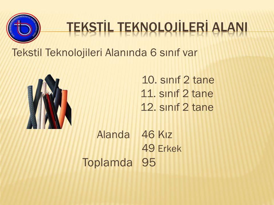 Tekstil Teknolojileri Alanında 6 sınıf var 10. sınıf 2 tane 11.