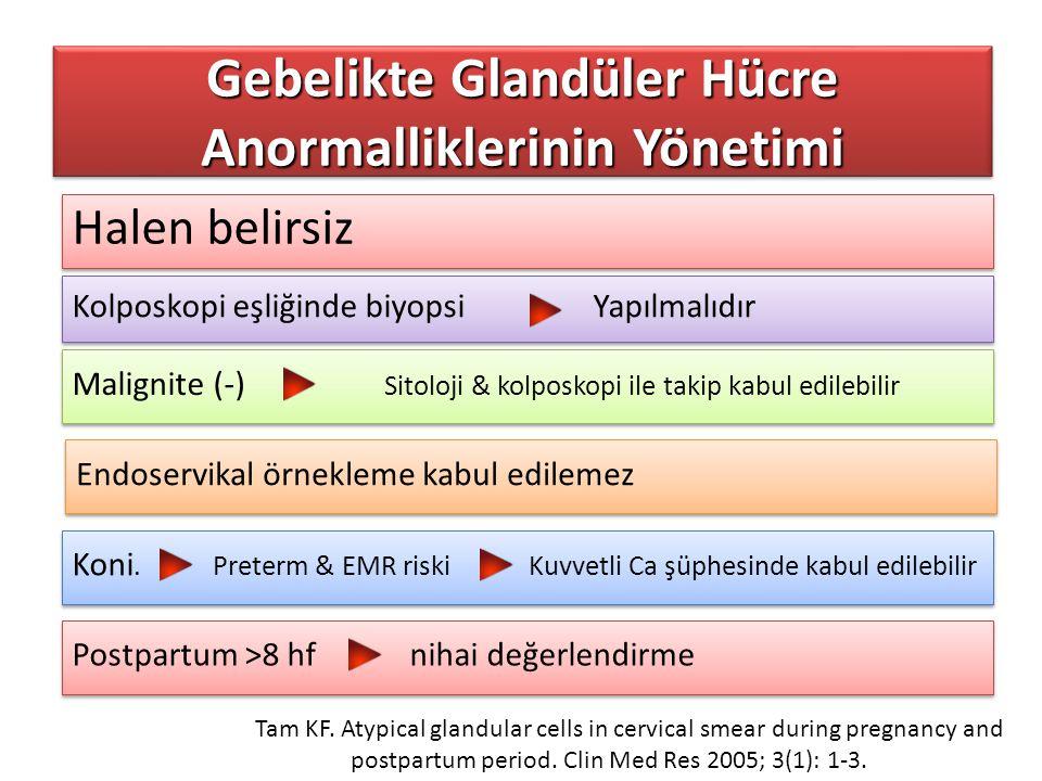 Halen belirsiz Gebelikte Glandüler Hücre Anormalliklerinin Yönetimi Kolposkopi eşliğinde biyopsi Yapılmalıdır Malignite (-) Sitoloji & kolposkopi ile