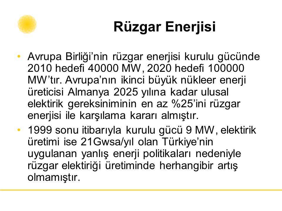 Rüzgar Enerjisi Avrupa Birliği'nin rüzgar enerjisi kurulu gücünde 2010 hedefi 40000 MW, 2020 hedefi 100000 MW'tır. Avrupa'nın ikinci büyük nükleer ene