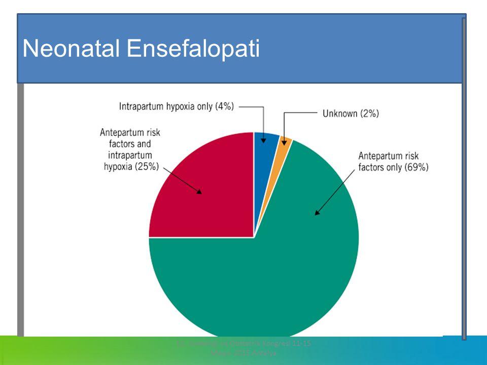 13. Jinekoloji ve Obstetrik Kongresi 11-15 Mayıs 2015 Antalya Neonatal Ensefalopati